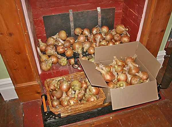 onionsfireplace